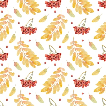 Seamless watercolor pattern with rowan leaves and berries