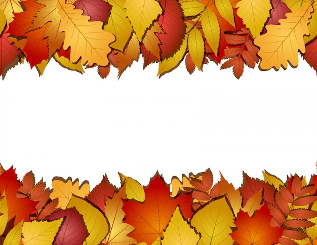 Seamless with red and yellow autumn leaves.  illustration