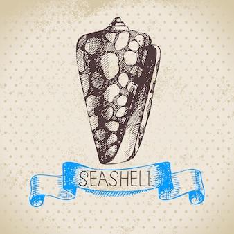 貝殻手描きスケッチ。ヴィンテージイラスト