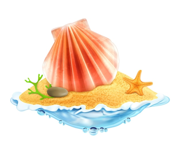 砂のイラストの貝殻