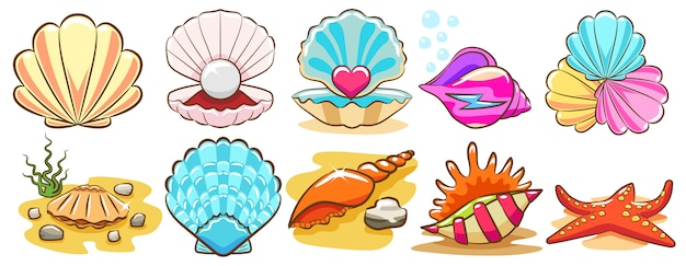 Seashell vector set clipart