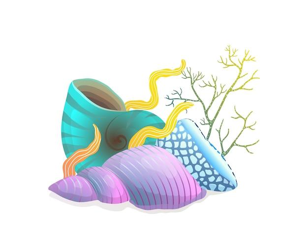 藻とサンゴを白で隔離される貝殻組成
