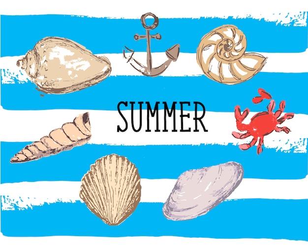 Seashells illustration. marine background for summer season