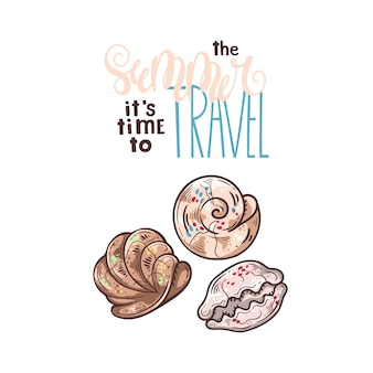 Seashells sketches. lettering: the summer it is time to travel.