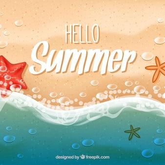 Seashore summer background