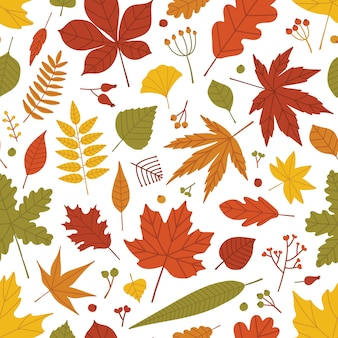 Seasonal botanical seamless pattern with autumnal foliage and berries scattered