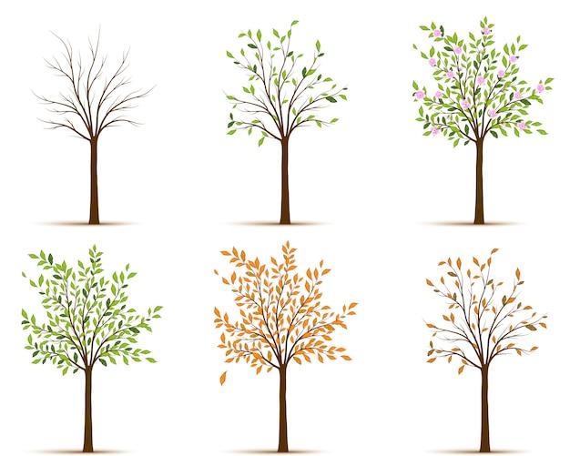 Сезоны дерева вектора