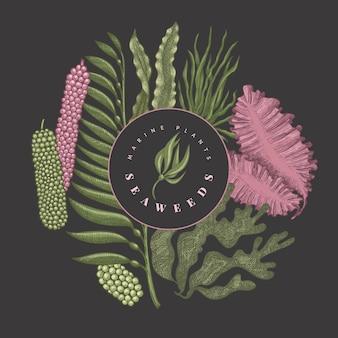 해초 색상 템플릿. 어두운 배경에 손으로 그린 해초 그림. 새겨진 스타일의 바다 음식 배너. 레트로 바다 식물 배경
