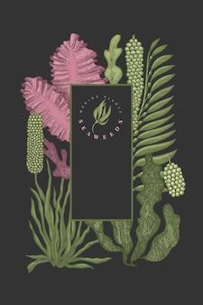 해초 색상 템플릿. 어두운 배경에 손으로 그린 해초 그림. 새겨진 스타일의 바다 음식. 레트로 바다 식물 배경
