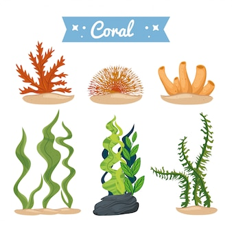 Seaweed and coral, underwater nature icons