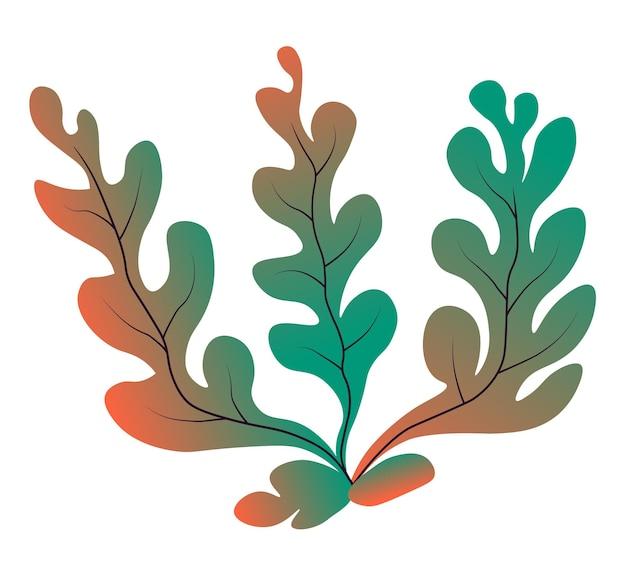 水中、海または海の植物相で成長する海藻。孤立した葉の多い植物、植物の生物多様性と水。緑の枝と水族館の装飾。海洋および航海の野生生物、フラットスタイルのベクトル