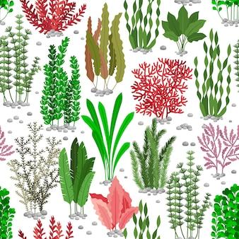 해초 완벽 한 패턴입니다. 해양 패션을위한 바다 잡초 모피 배경. 색된 해초 해저, 자연 야생 동물 식물