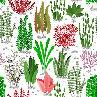 Seaweed seamless pattern. sea weed fur  background for marine fashion. colored seaweed undersea, nature wildlife flora