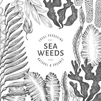 해초 템플릿. 손으로 그린 해초 그림. 새겨진 스타일의 바다 음식 배너. 레트로 바다 식물 배경