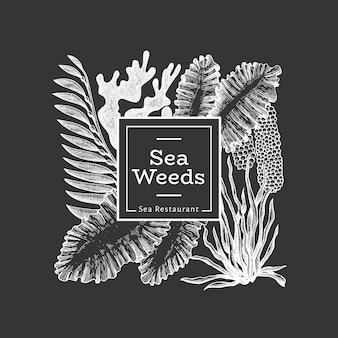 해초 템플릿. 분필 보드에 손으로 그린 해 초 그림입니다. 새겨진 스타일의 바다 음식 배너. 빈티지 바다 식물 배경