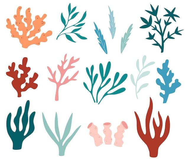 Набор водорослей. коллекция водорослей, растений, морских водорослей и силуэтов океанских кораллов. подводные растения для декора аквариума. природа водорослей морская. яркие морские элементы. векторная иллюстрация.