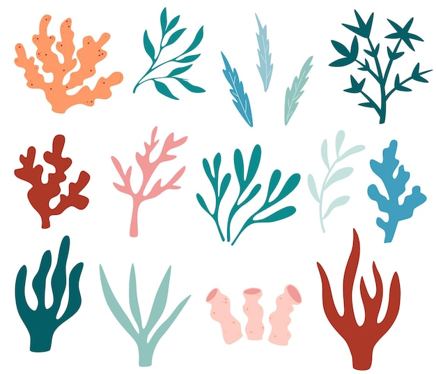 Seaweeds set. collection of seaweeds, planting, marine algae and ocean corals silhouettes. underwater plants for aquarium decor. nature seaweed marine. bright sea elements. vector illustration.
