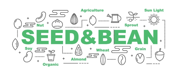 Seed and bean vector banner