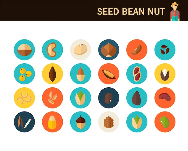 Seed been nut concept flat icons.