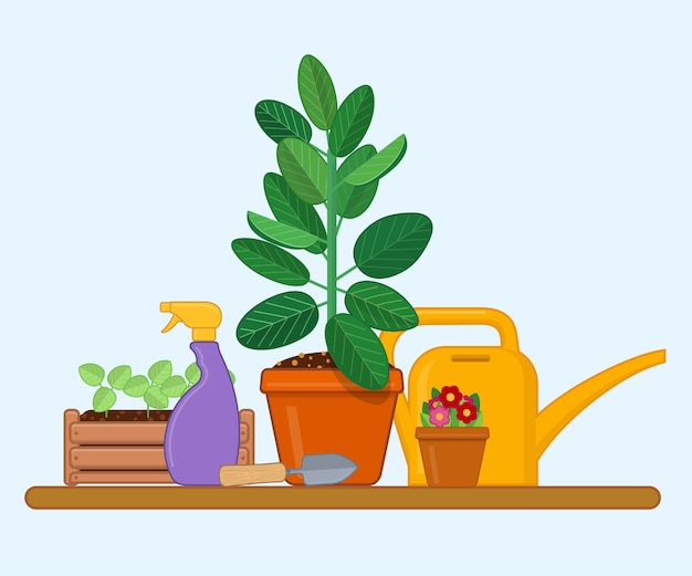 플랫 스타일의 냄비에 묘목과 관엽 식물