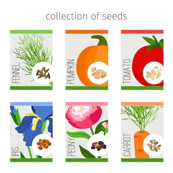 Seeds collection in package