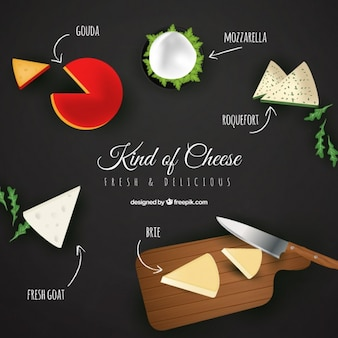 Selection of cheese in realistic style