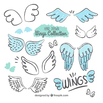 Selection of decorative wings with blue details