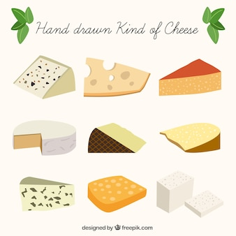 Selection of delicious cheese