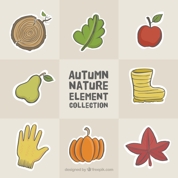 Selection of hand-drawn autumnal elements
