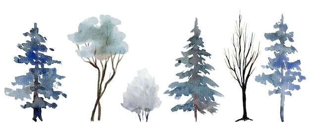 冬の木と低木の選択