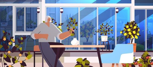裏庭の温室またはホームガーデンの水平ベクトル図で鉢植えの植物の世話をする年配の女性の庭師