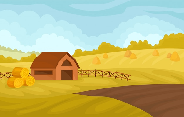 Serene autumn rural landscape with barn and yellow fields, agriculture and farming  illustration on a white background