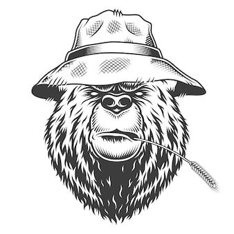 Serious bear head wearing panama hat