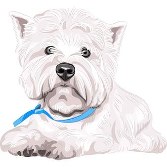 Серьезная собака вест хайленд уайт терьер породы сидя