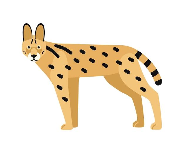 白地に分離されたサーバル。ほっそりした体と斑点のあるコートを持つ野生のアフリカの猫。美しいエキゾチックな略奪動物。ゴージャスな肉食哺乳類。フラット漫画スタイルのベクトルイラスト。