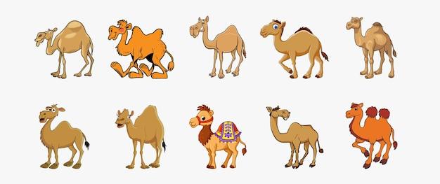 Set of 10 camel vector illustration