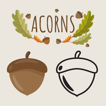 Set of acorns flat icon and line art.