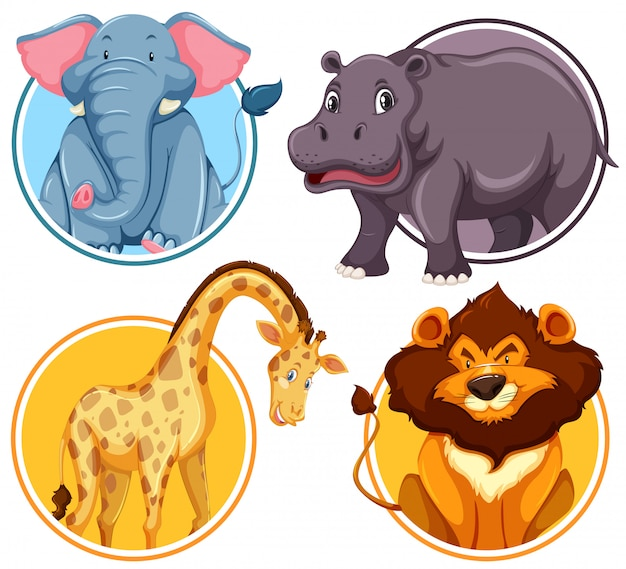 Set of african wildlife in circle banner