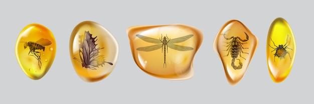 Установите янтарный камень с насекомыми, изолированные на белом фоне. коллекция замороженных в янтаре древних и современных насекомых. нефтяная смола для дизайна. драгоценный камень или минеральный пузырь.