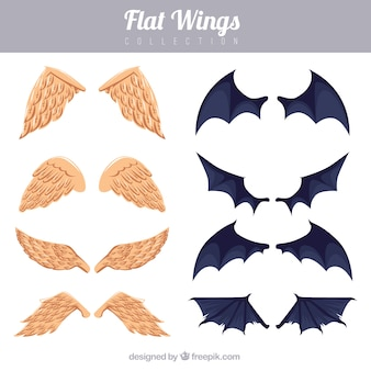 Set of angel and bat wings