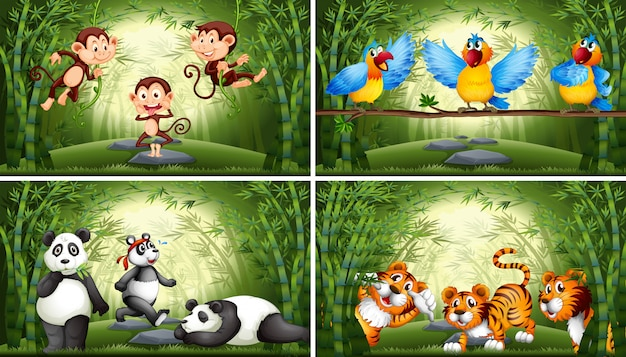 Set of animal in bamboo forest illustration