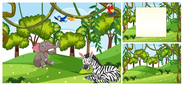 Set of animal in nature template