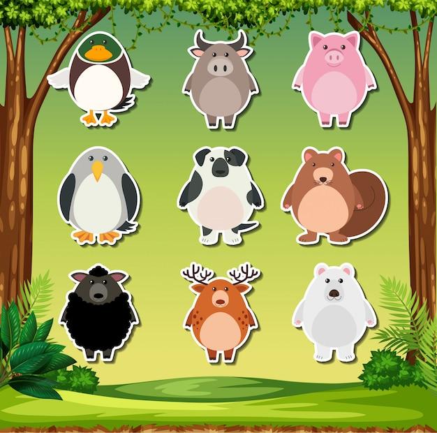 Set of animal stickers