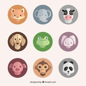 Set di volti di animali in cerchio