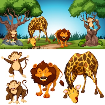 Set of animals in nature scene