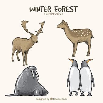 Set di animali durante la stagione invernale