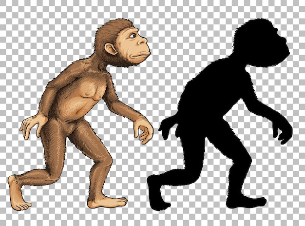 Set of ape and its silhouette