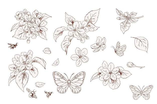 Set of apple flowers and butterflies