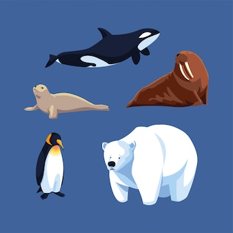 Set of arctic animals