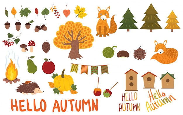 Set of autumn elements. collection of autumn animals and plants.